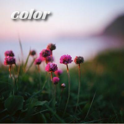 Простой способ выбрать цвета для веб-дизайна